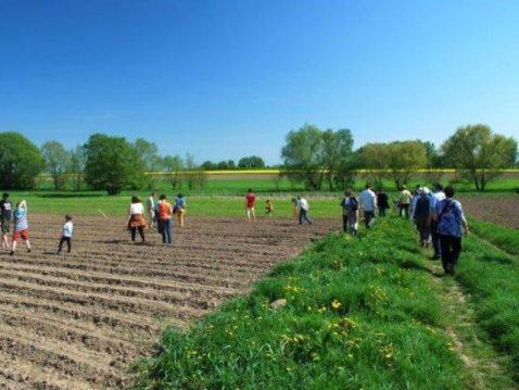 Menschen arbeiten in einem Feld