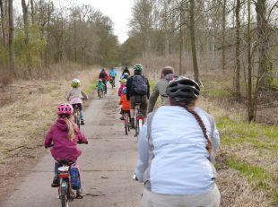 Kinder und Erwachsene fahren mit dem Fahrrad durch einen Wald